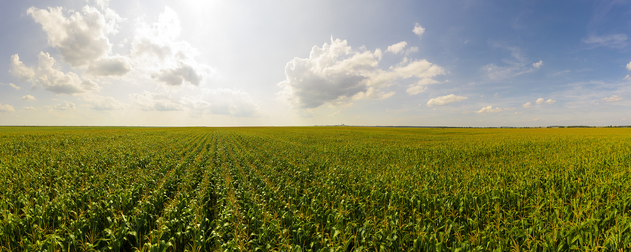 In a Case Study Conducted by Lux Research, AquaSpy-Managed Fields Generated 22% Higher Yields