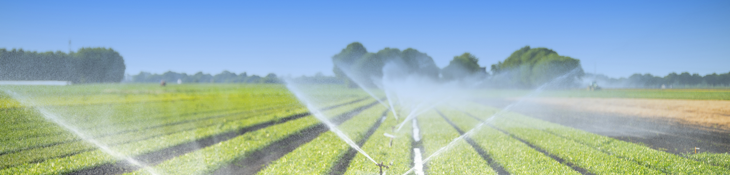 Why Evapotranspiration Affects Crop Yield
